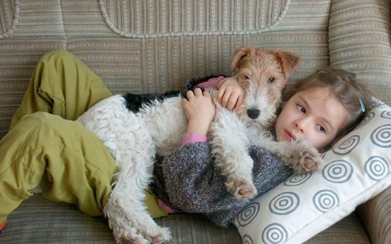 В Иркутске для сирот и детей с ограниченными возможностями здоровья провели сеансы зоотерапии